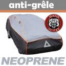Bache anti-grele en néoprène pour voiture Austin Healey 3000 BJ7